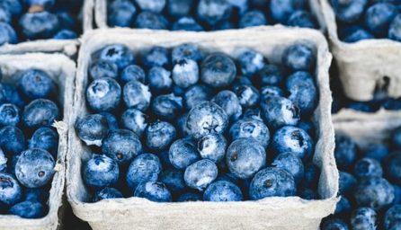 blueberry 1326154 340
