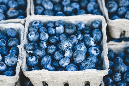 Blueberry, Blue, Delicious, Fruit, Food