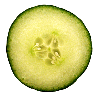 cucumber 1687628 340
