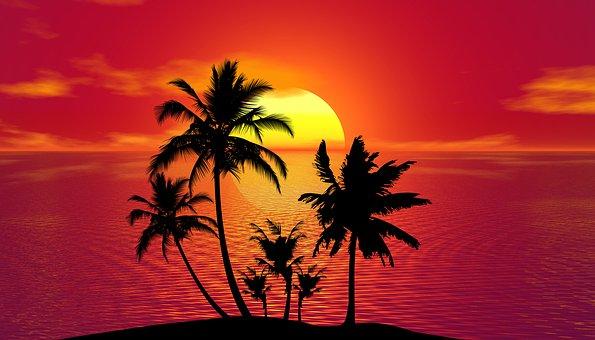 tropical 1651423 340
