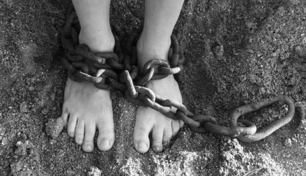 chains 19176 340