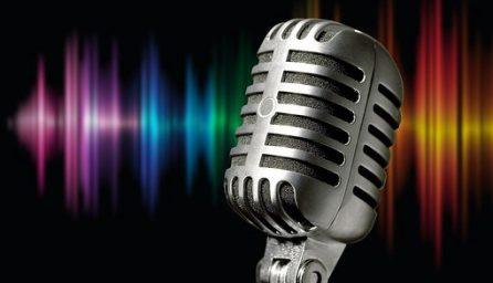 microphone 1074362 340