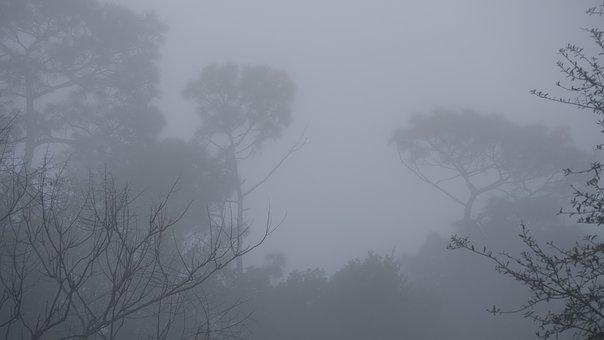 Fog, Grey, Dreary, Mist, Gray, Air