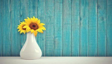 sunflower 3292932 340